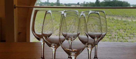 Wine Trip Bordeaux